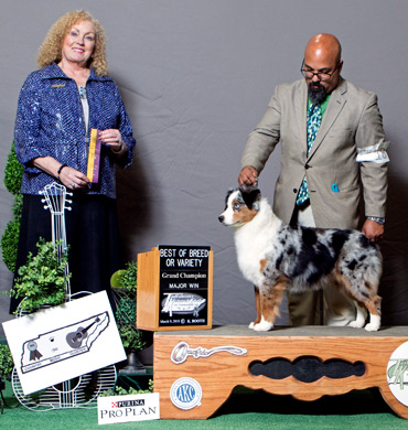 Elektra earns Best of Breed win
