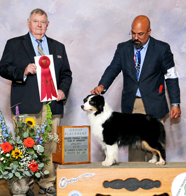 Ember wins Group Placing at Golden Triangle Kennel Club of Mississippi