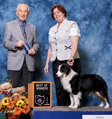 Ember earns Best of Winners at Lima Kennel Club