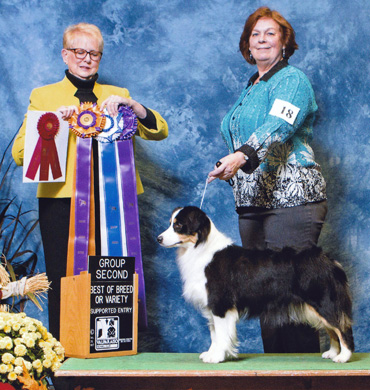 Ember wins Group Second at Valparaiso Kennel Club