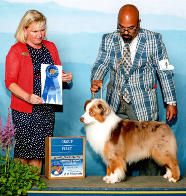 Blaze earns Group 1 at Asheville Kennel Club