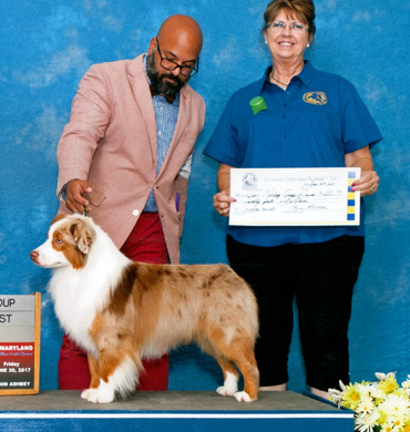 Blaze wins Group 1 at Southern Maryland Kennel Club