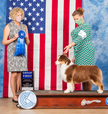 Epic wins Group First at Cypress Creek Kennel Club of Texas