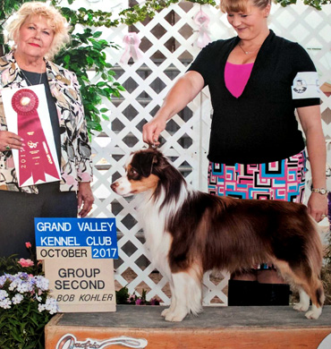 Epic earns Group 2 at Grand Valley Kennel Club