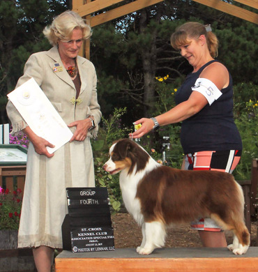 Epic earns Group 4 at St. Croix Kennel Club