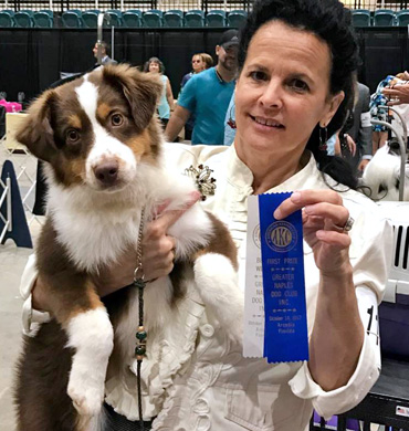 Kash wins First Prize at the Greater Naples Dog Club