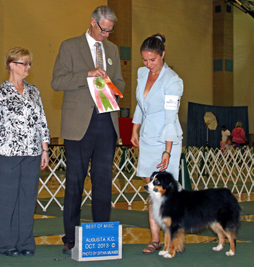 Ref Best in Show at Augusta Kennel Club