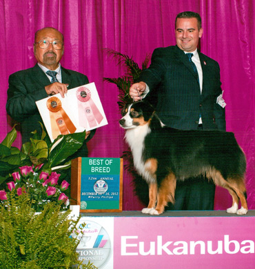 Ref Best of Breed at Eukanuba 2012
